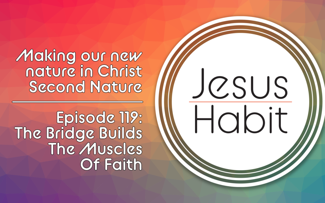 TJH, DD 0119: The Bridge Builds The Muscles Of Faith