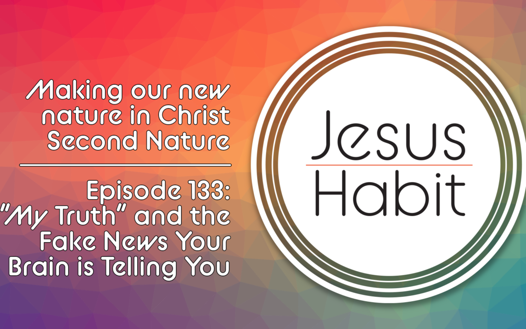 """The Jesus Habit Podcast, Episode 133: """"My Truth"""" and the Fake News you Brain is Telling You."""